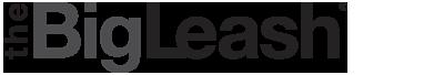BigLeash V-10 Vibration Trainer Logo